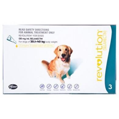 Revolution Dog 20.1 – 40 kg (Teal) Including Canex Tabs