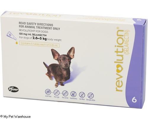 Revolution Dog 2.6 – 5 kg (Purple)