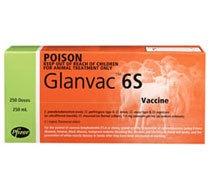 Glanvac 6S (500ml)