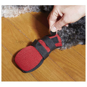 Dog Boot Wound Medium