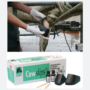 Cowslips Original Left only 4-pack