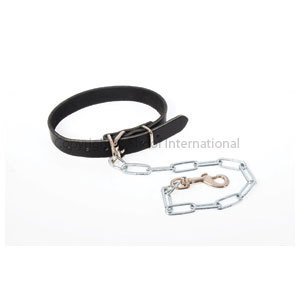 Dog Collar Leather w Chain size 4