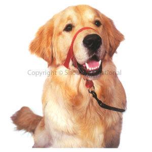 Dog Head Collar Halti size 4