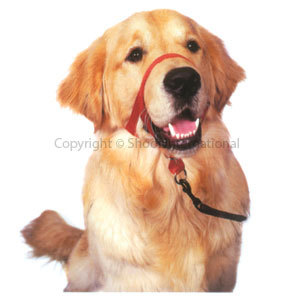 Dog Head Collar Halti size 0