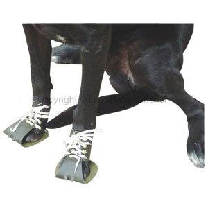 Dog Boot Saxby Medium Pair