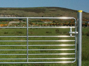 Gates and Fittings (Cattle)