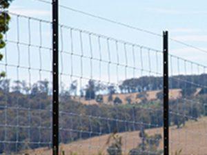 Wire (OneSteel Cyclone)