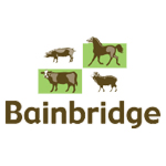 Bainbridge Vet