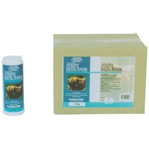Antiseptic Dusting Powder 200gmX